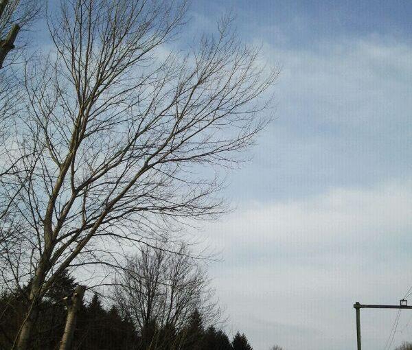 foto_28_feb